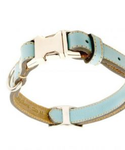 phoenix charm premium leather adjustable side release dog collar
